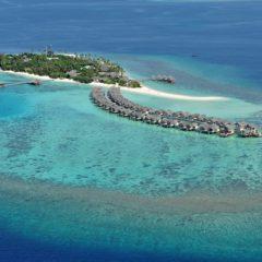 环礁的起源