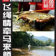 《钓鱼秘笈》电子杂志十二月份(2017)