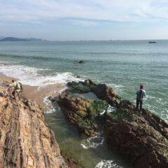 海滩午鱼约会